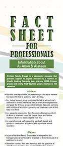 Fact Sheet for Professionals, English